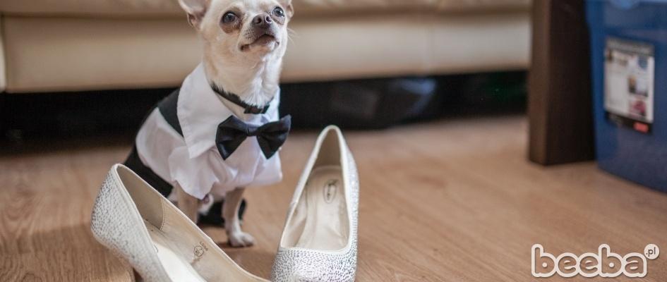 Fotografie z przygotowań ślubnych...